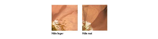 Couleurs Nature Sun - Yves Rocher