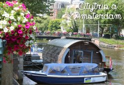 Citytrip à Amsterdam !