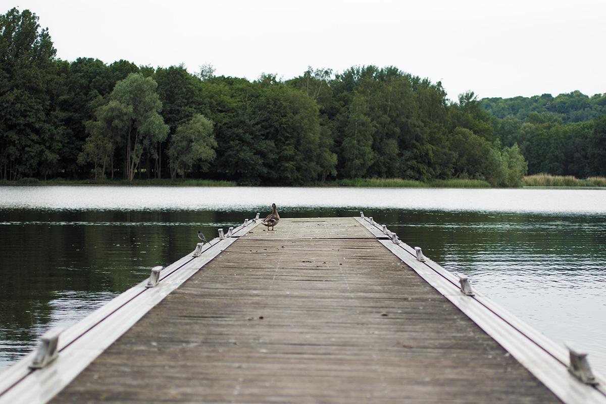 Center Parcs du domaine Le Lac d'Ailette