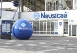 Nausicaá, l'aquarium géant à Boulogne-sur-Mer